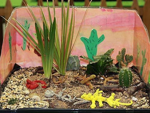 Children from various elementary schools submitted their creative garden scapes for judging.