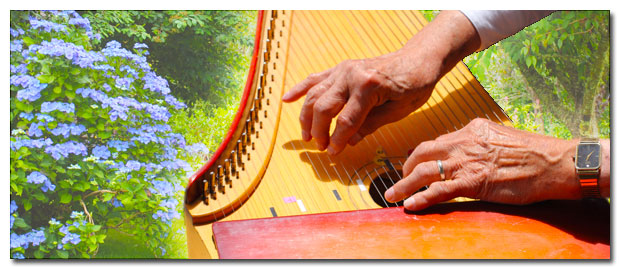 Music in the Gardens Tour