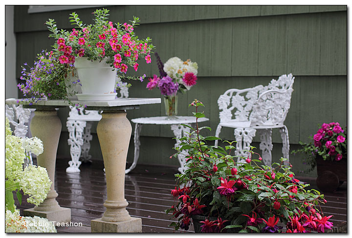 Ornate metal chairs adorn  a deck.
