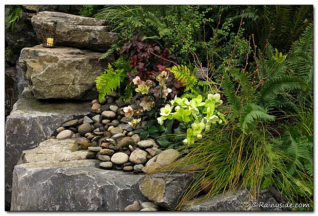 Rock Work and Plants
