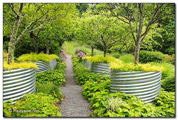 Fruit tree walkway