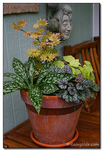 foliage container