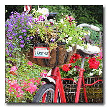 Tricycle Flower Basket