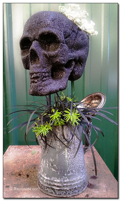 plants and skull