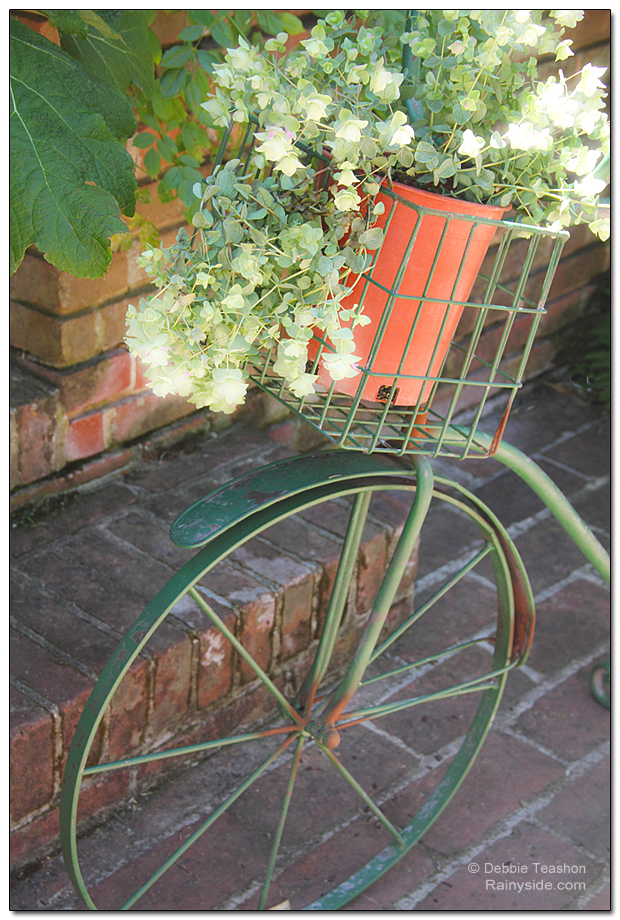 Bicycle with potted flowers